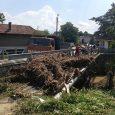 Наводнение във Враниловци, 28 юли 2014 г.
