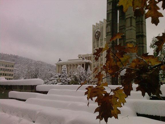 Бедствено положение в Габрово - 29 октомври 2014