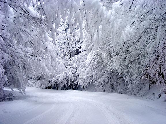 Зимна обстановка в Габрово