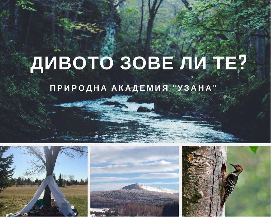 """55 нюанса диво"" - конкурс на Детска природна академия ""Узана"""