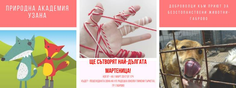 Най-дългата мартеница в България. Изображение: Осинови Приятел От Приют За Безстопанствени Животни Габрово