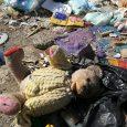 """Пролетно почистване 2018: Обери боклука"""