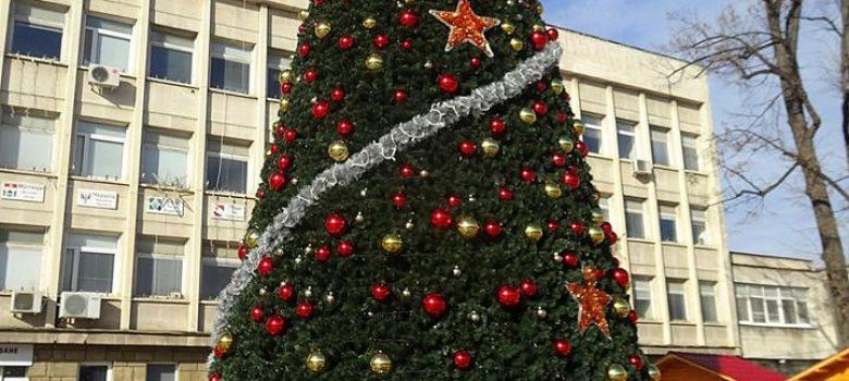 """Новата коледна елха на площад """"Възраждане"""" в Габрово. Фотограф: Стоян Братованов"""